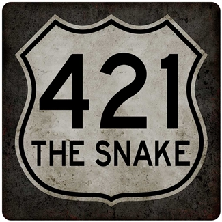 metal 421 the snake 12x12